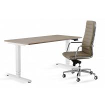 Flex 3 zit/sta bureau rechthoek 160x80cm